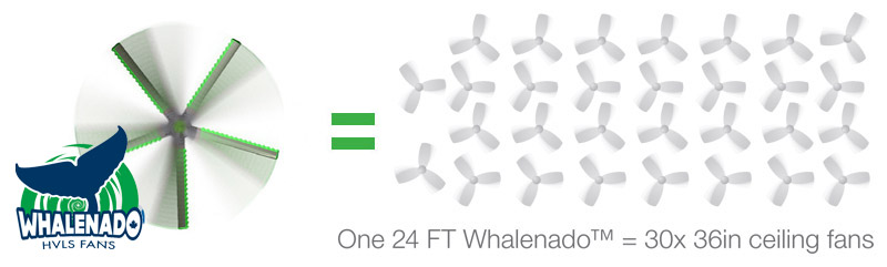 1 24FT Whalenado performance is equal to 30 36FT ceiling fans